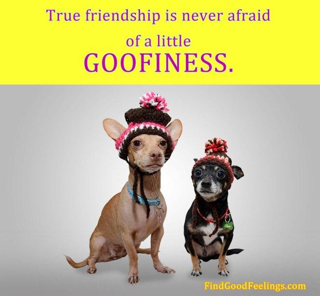 friendship goofiness