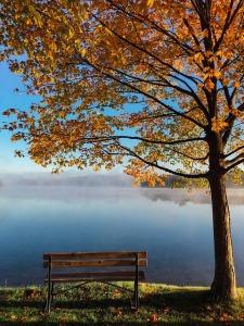 lake-983926_640