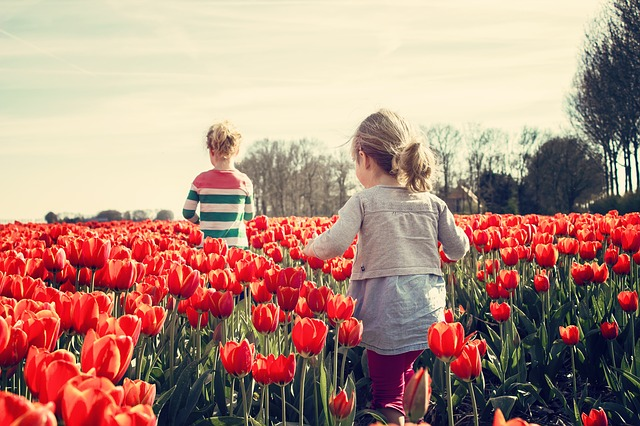 girls in tulips field