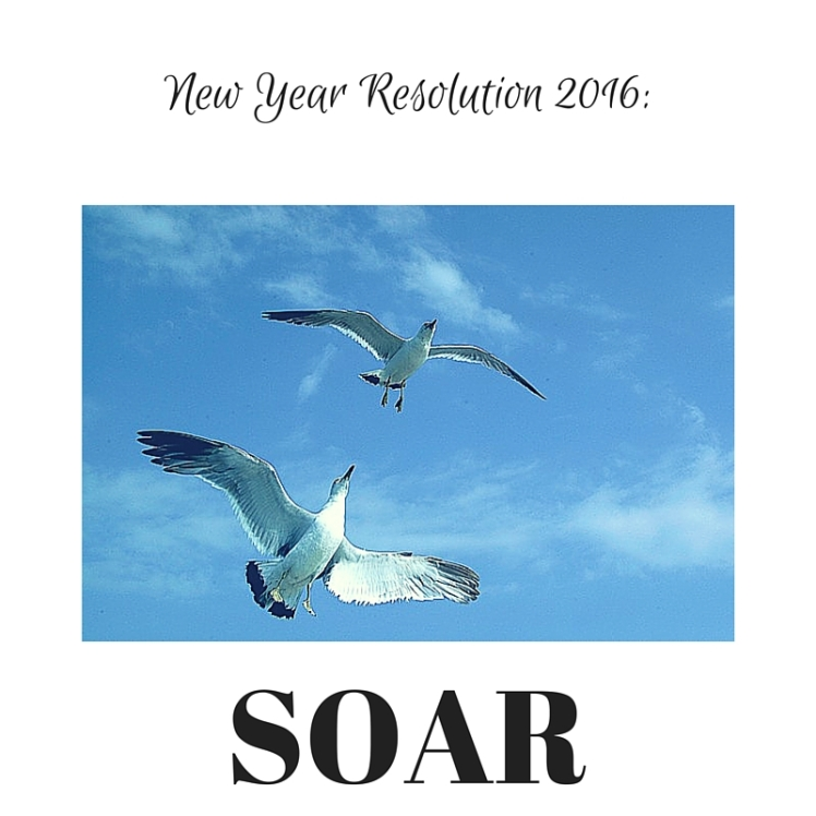 New Year Resolution seagulls soaring