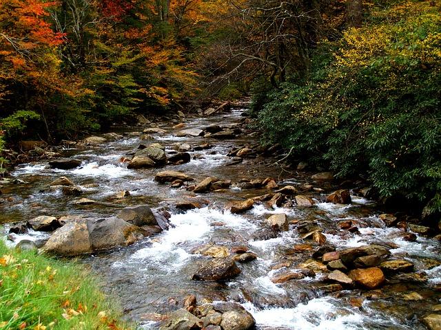 stones in flowing river brook